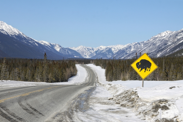 Road trip sur la Alaska highway