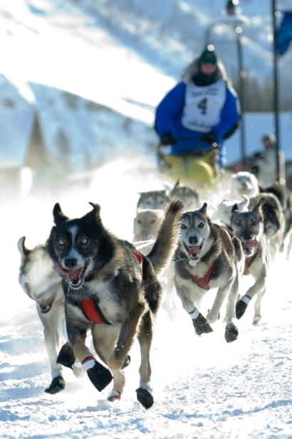 photo : gouvernement du Yukon