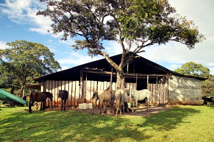Un ranch près de Boquete