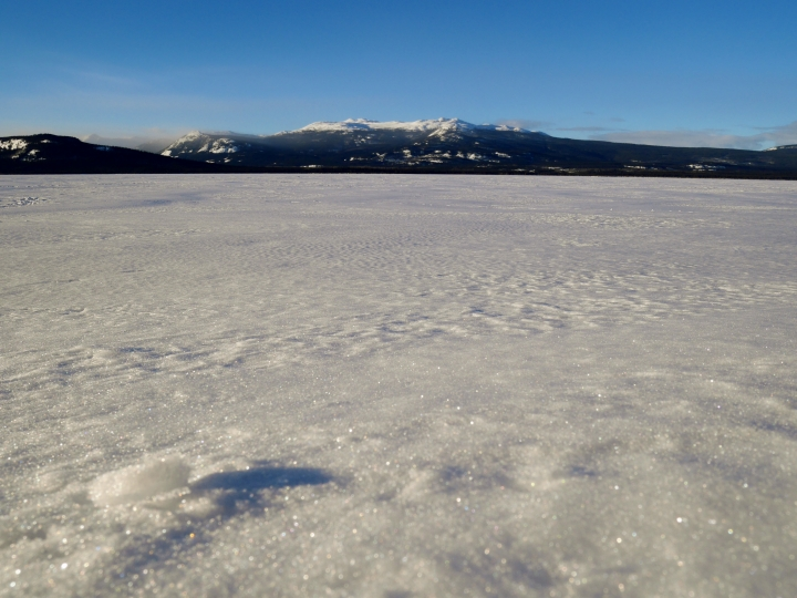Le lac Little Atlin en hiver