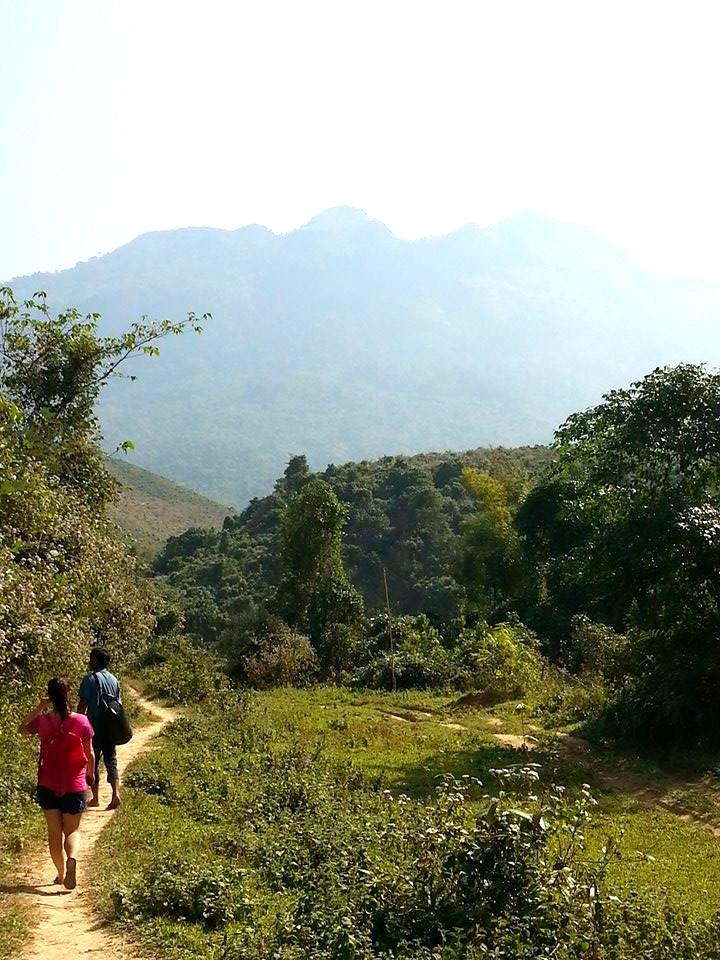 Randonnée à travers les rizières